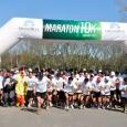 maraton20101.jpg